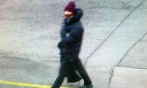 Photo released by Danish security forces, showing the suspect