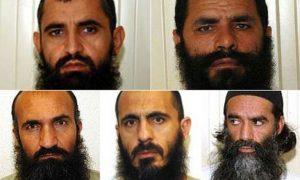 The Taliban Five
