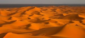 desert circle 7