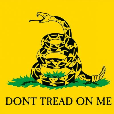"If you display the Gadsden flag, you may be profiled as an ""extremist"""