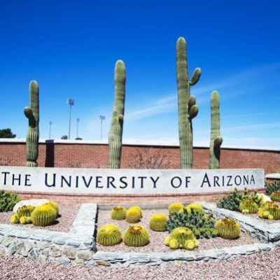 Tax Dollars Hard at Work: University of Arizona to Hire Social Justice Advocates