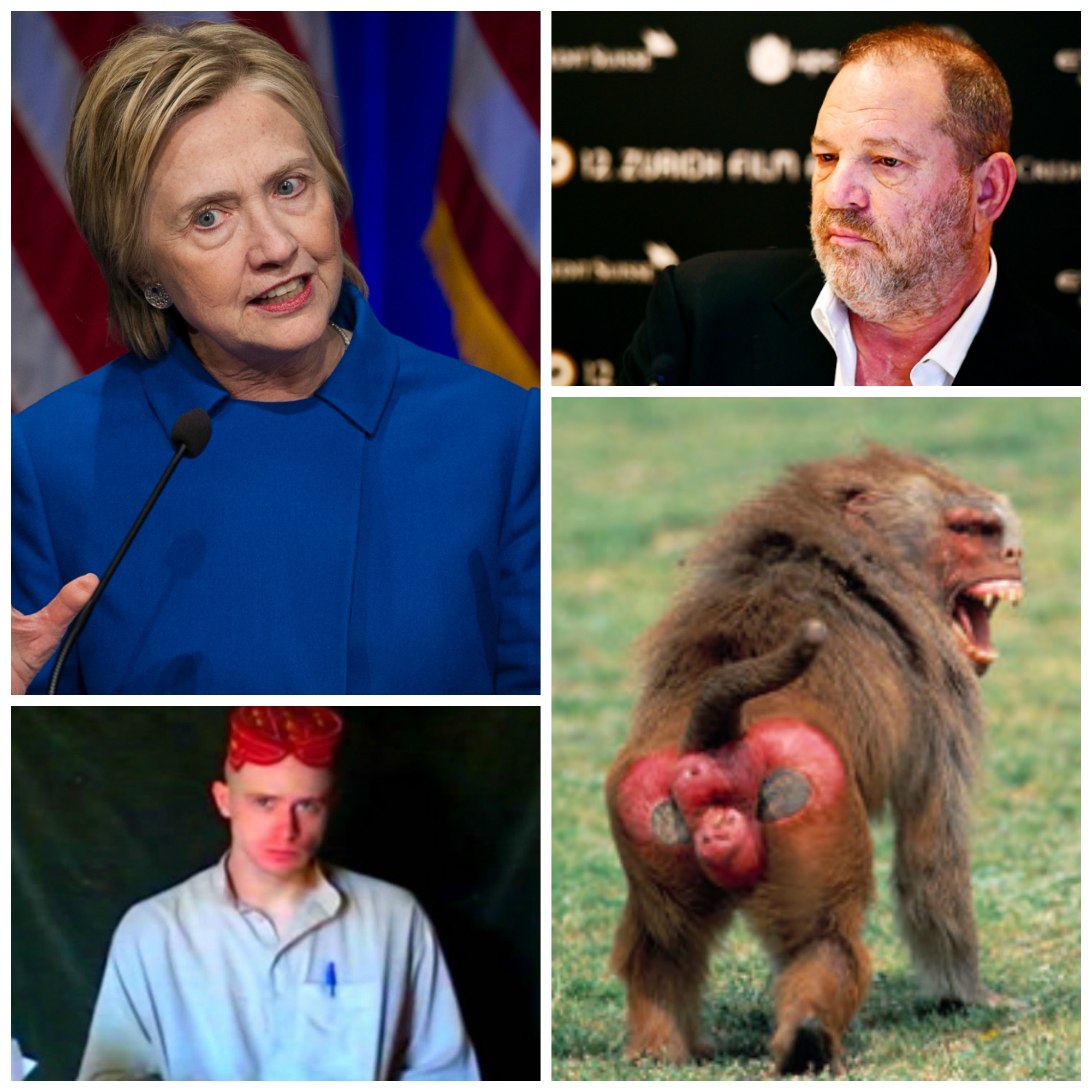 Hillary Clinton, Bowe Bergdahl, Harvey Weinstein and a Baboon's Backside