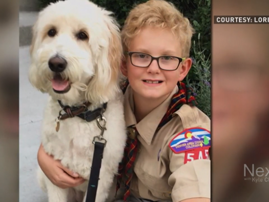 Colorado Cub Scout Is Left Without a Den Because of Crazy Mother