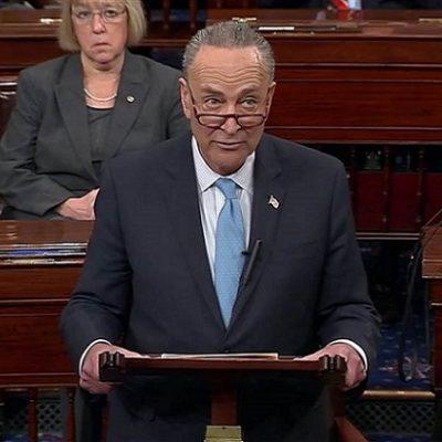 Democrats Blink First, Vote To End Shutdown [VIDEO]