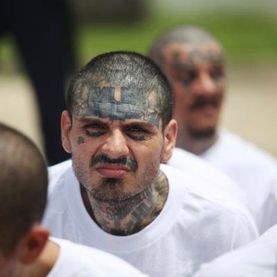 Yes MS-13 Gang Members Are Animals. Here's Why [VIDEO]