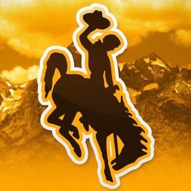 University Of Wyoming Is Right: We Do Need More Cowboys [VIDEO]