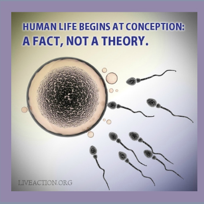 'Life Begins At Conception' Is A Difficult Idea For The Terminally Stupid