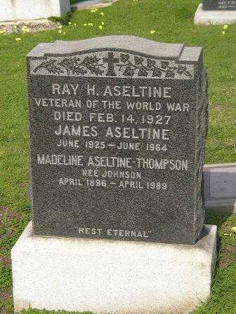Veterans Day Ray Aseltine WWI