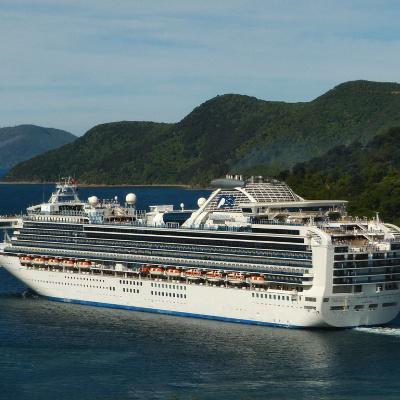 Coronavirus Cruise Ship Hostages Plead For Trump's Help