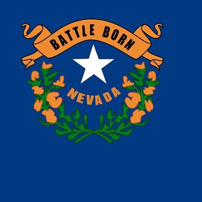 Nevada Caucus Results In Bernie Win