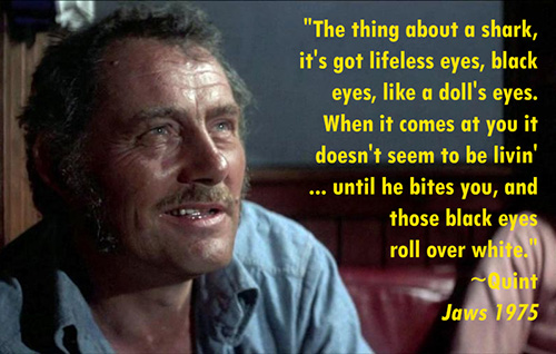 Fists are a threat - quint quote
