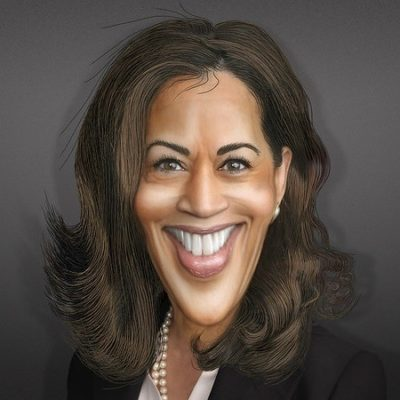 Faking it for Different Reasons: Biden/Harris 2020