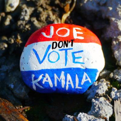Joe Biden and Kamala Harris Are Anti-Woman