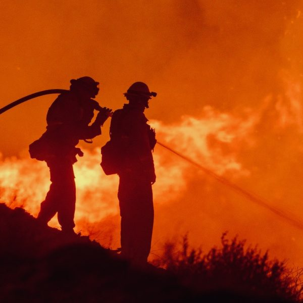 Climate Change Policies Will Fix Wildfire Problems