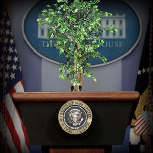 inauguration of FICUS Biden
