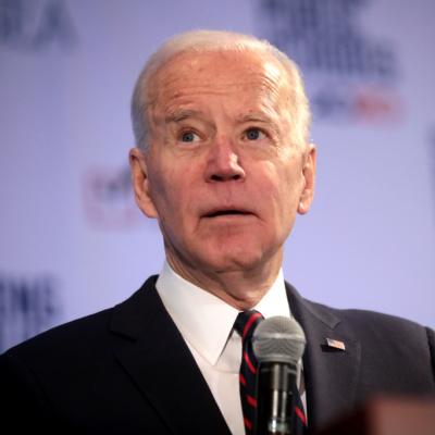 NY Times Maureen Dowd Thinks Joe Biden Is Cool