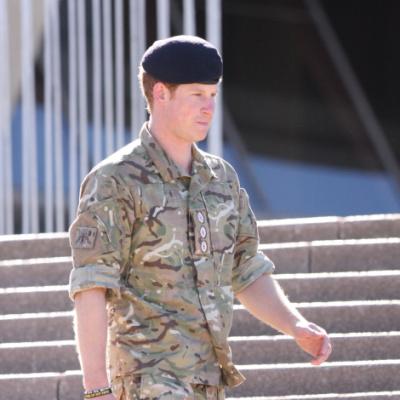 Prince Harry Calls First Amendment Bonkers