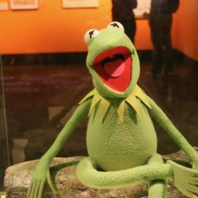 Kermit The Woke And The Rainbow Connection