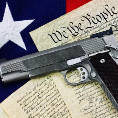 4th Circuit Panel Rules Handgun Ban UnConstitutional