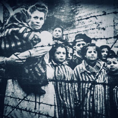 Texas Teachers Told To Teach Opposing Views Of Holocaust